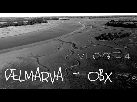 Wild Horses of Assateague Island and the Outer Banks | MOTM VLOG #44