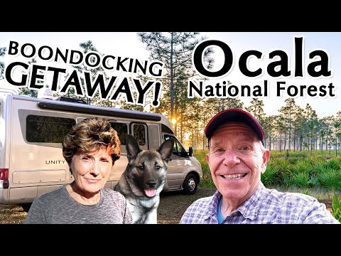 RV Boondocking in Florida's Ocala National Forest