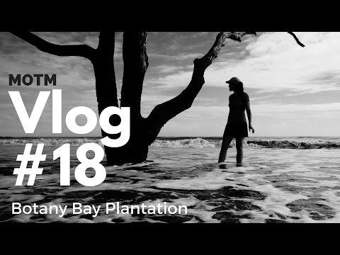Botany Bay Plantation, South Carolina | MOTM VLOG #18