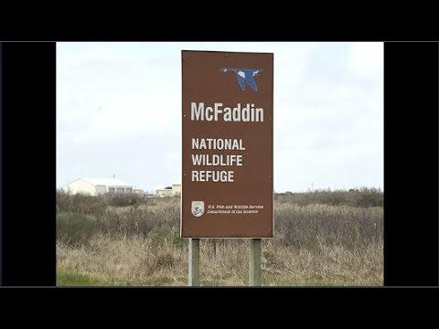Mcfaddin National Wildlife Refuge Boondocking