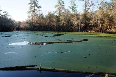 river sinking o'leno state park florida