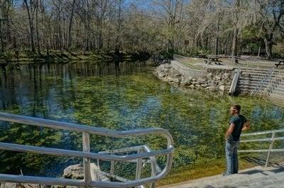 green algae in poe springs