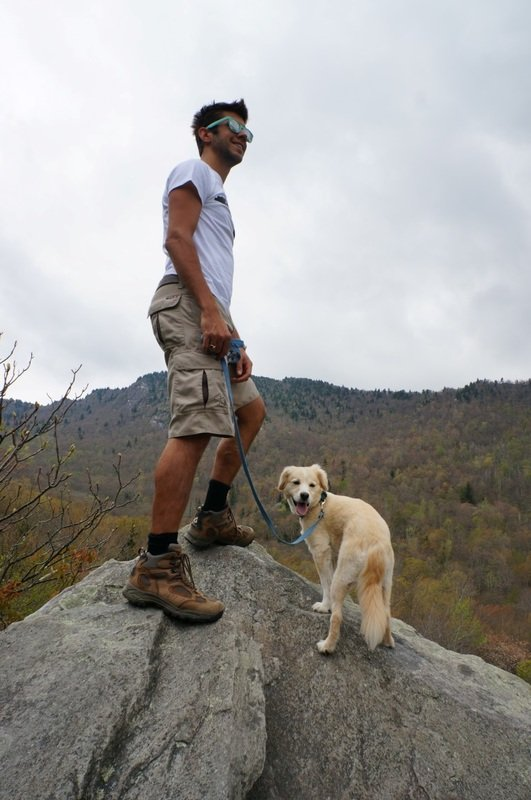 hiking with dogs on grandfather mountain near boone
