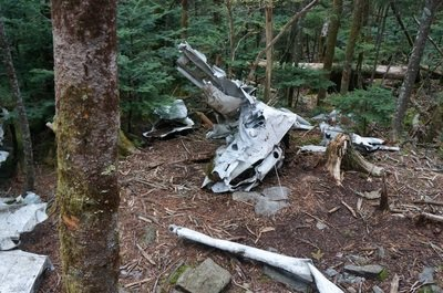 plane crash in woods grandfather mountain