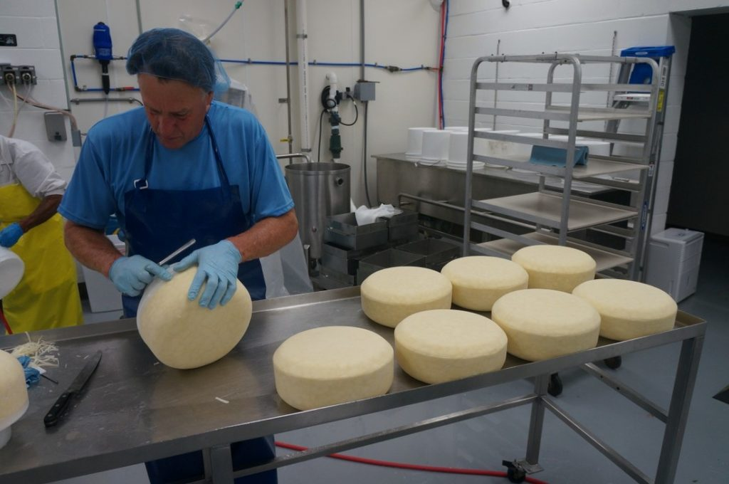 preparing cheese wheels
