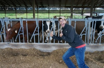 posed with cows