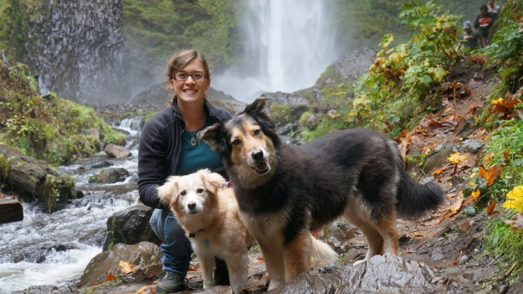 latuourell falls, columbia river gorge, mortons on the move dogs