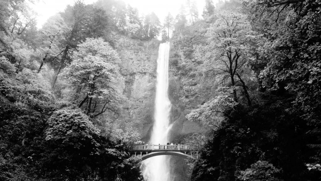 multnomah falls in columbia river gorge