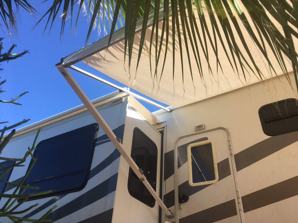 looking up at RV awning with sun coming through palm trees