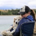 rving with dogs avoid losing them