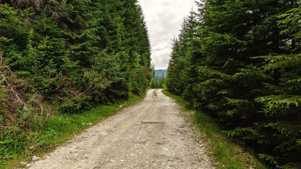 dirt offroad trail