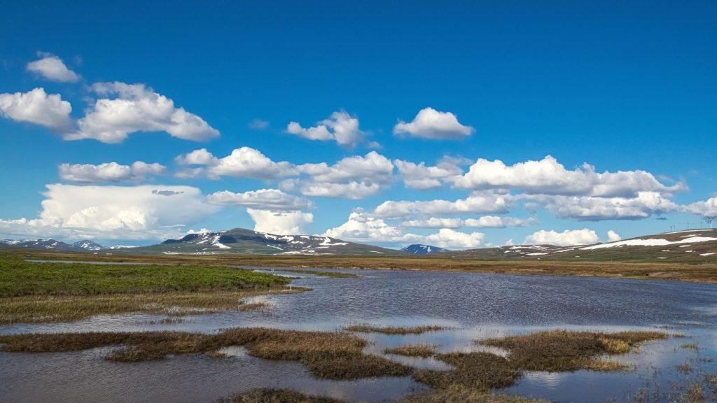 alaska lowlands