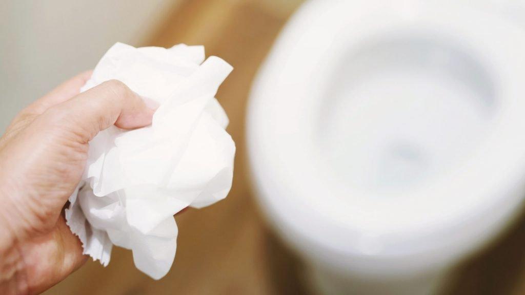 toilet paper in toilet
