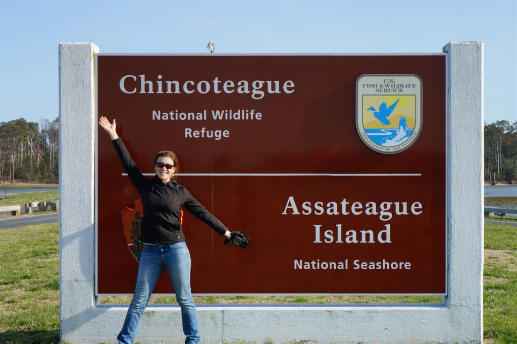 Sign for the Chincoteague National Wildlife Refuge in Virginia/Maryland