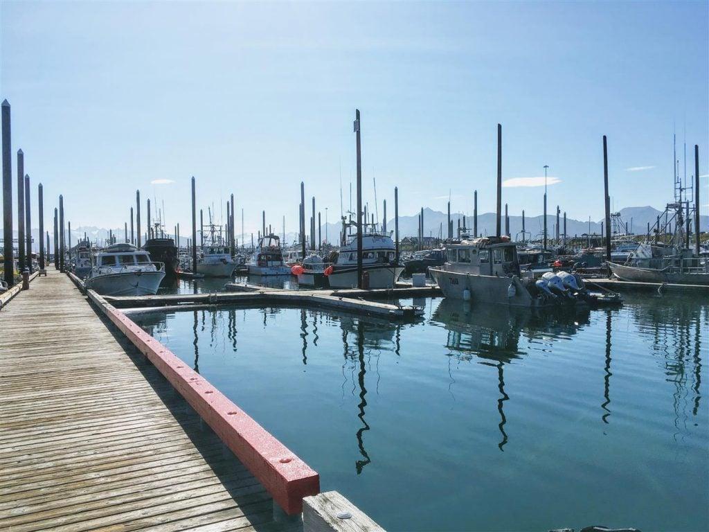 Homer Small Boat Harbor, Homer, Alaska