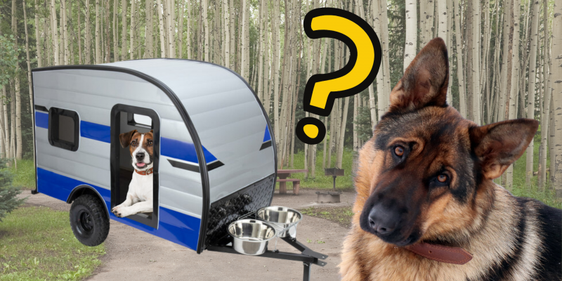 Dog Camper with Dog in it