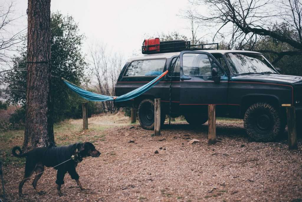 Overlander vehicle parked at campsite with hammock and dog.