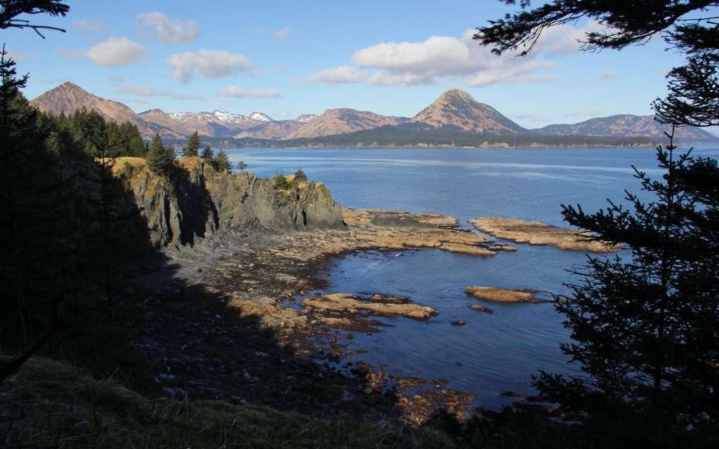 Kodiak Island scenery shot with mountains and trees.