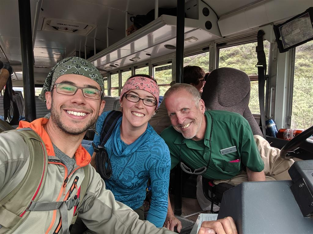 bus tour denali wildlife