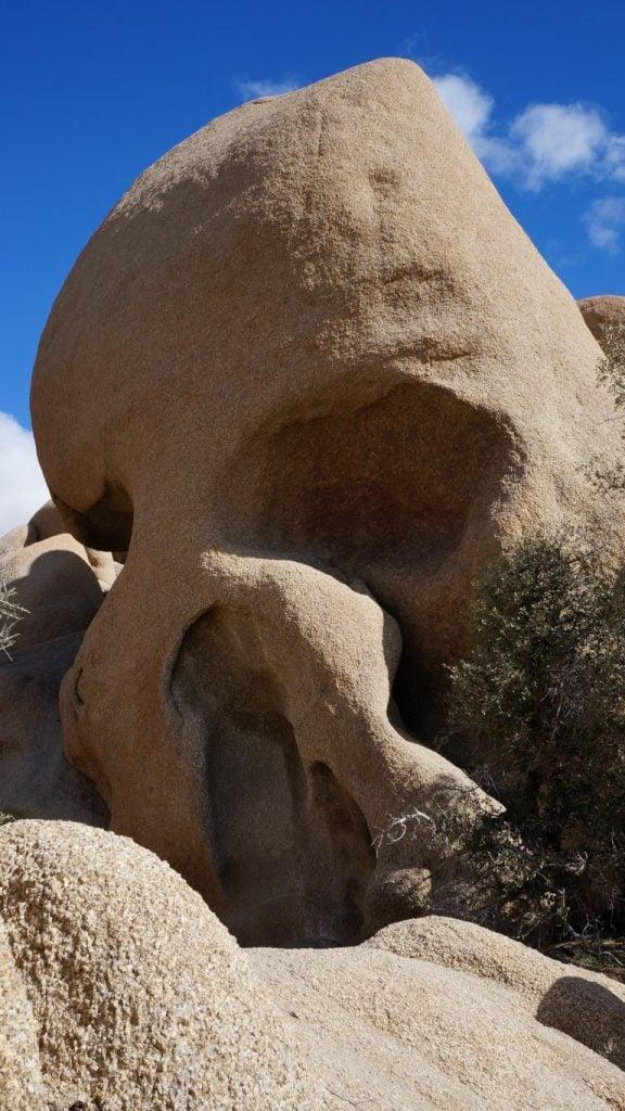 skull rock joshua tree