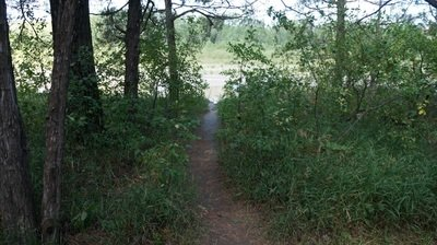 Trail to river