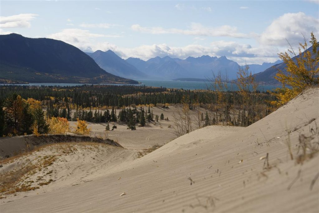 worlds smallest desert carcross canada