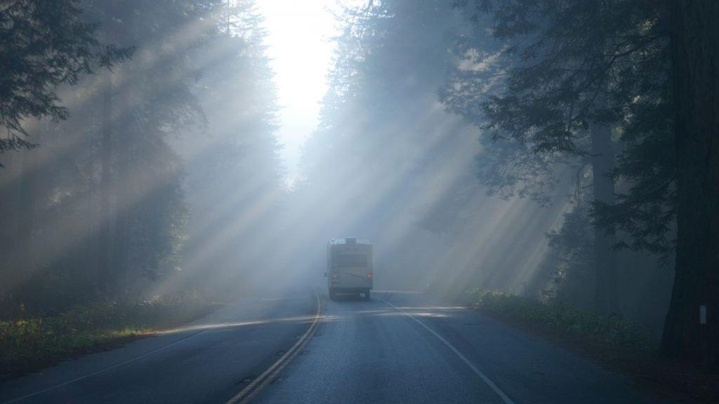 driving 101 near redwoods, fog