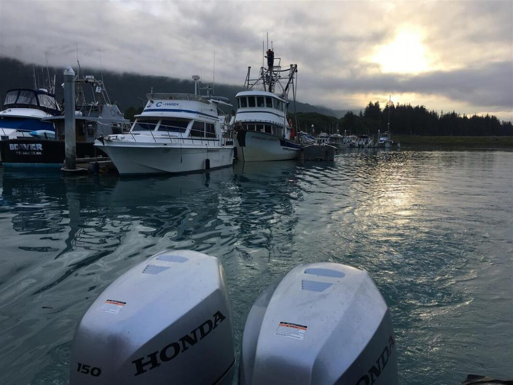 leaving the marina at dawn to go salmon fishing in valdez alaska
